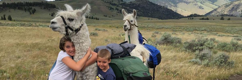 2016 Llama Trip